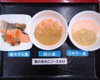 ミキサー食対応の調理済み食材